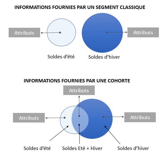 Cohorte-schema1