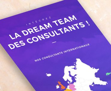 Infographie-Consultant-FR-miniature